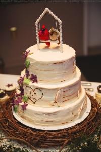 Cincinnati Dayton Columbus IN OH KY Wedding Photographer (15)